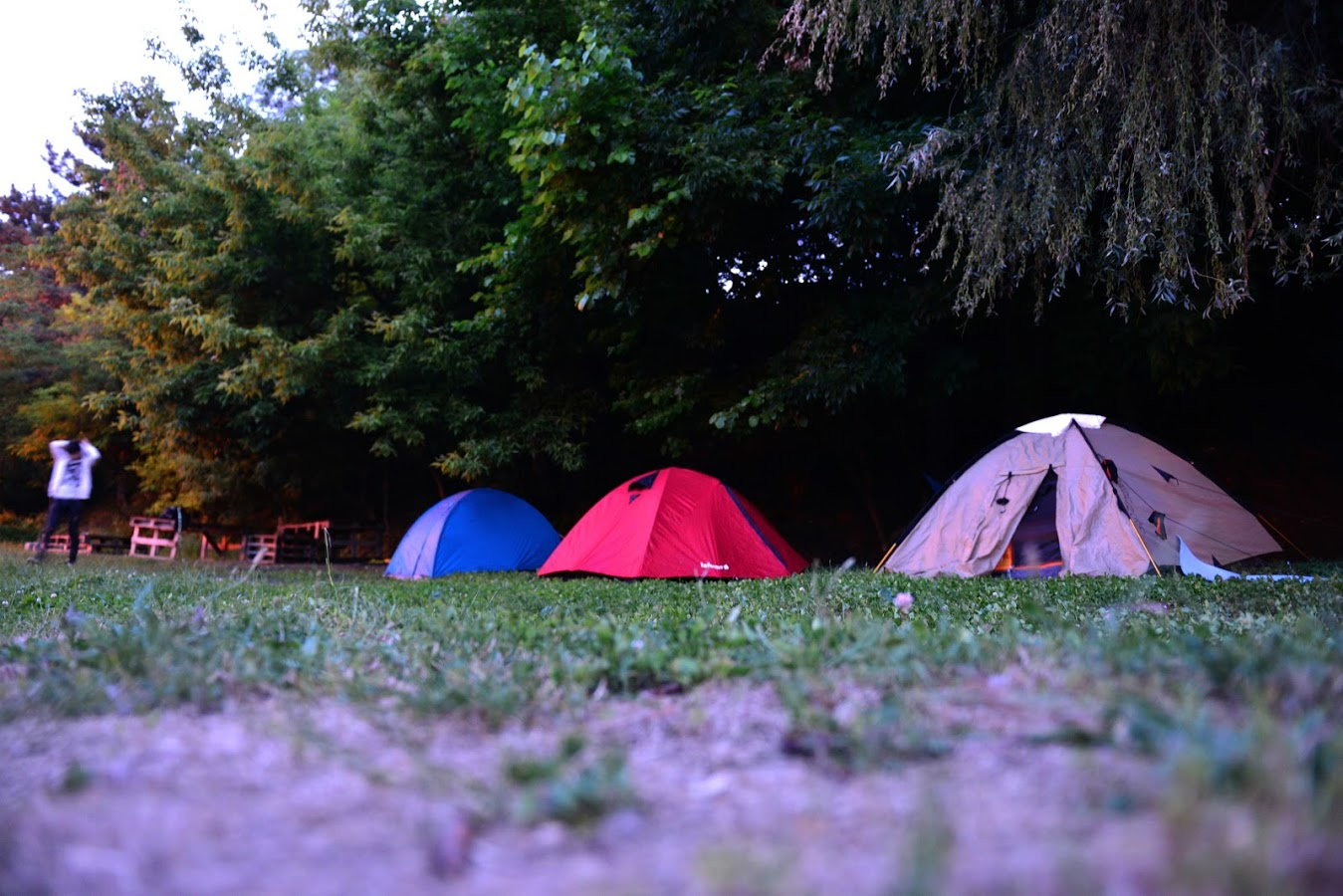 Camping PeliCAMP
