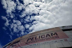 Pelicam-Centrul-Cultural-Jean-Bart4-300x200