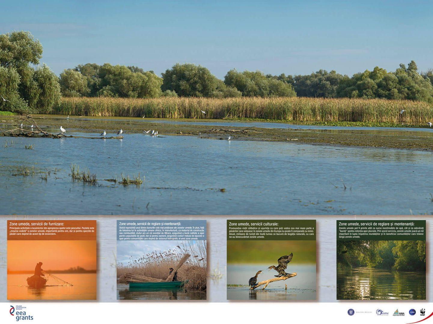 Photo exhibition: Ecosystems – WWF România