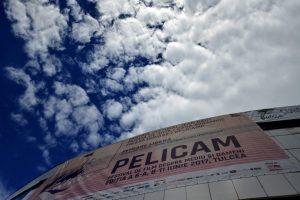 Pelicam-Festival-International-de-Film-2017_63-300x200